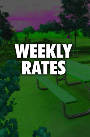 Weekly Rates